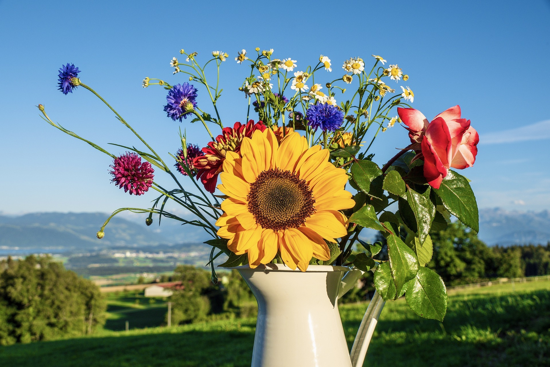 bouquet-of-flowers-5391136_1920